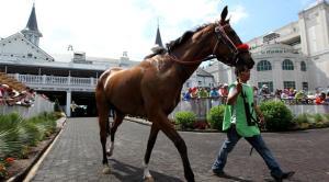 horse paddockpg-horizontal