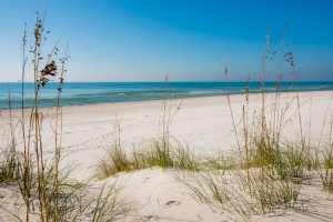 beach at gulf shores
