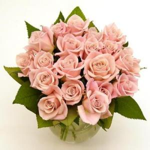 sweetheart-roses-pink